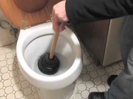 toiletplunger7